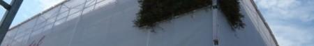 gruene-fassade